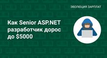 Как Senior ASP.NET разработчик дорос до$5000