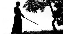 Сдача электронной отчетности через Приват24: Путь Самурая