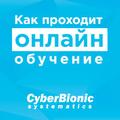Серия вебинаров «Как проходит онлайн обучение в CyberBionic Systematics»