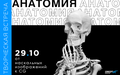 """Лекция """"Анатомия: от наскальных изображений к CG"""""""