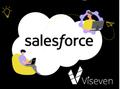 Viseven Salesforce Trainee program 2.0