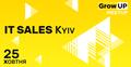 """Зустріч """"IT Sales Kyiv"""""""