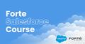Forte Salesforce Development Course [додатковий набір]