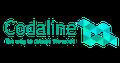 Набір на курси Codaline