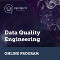 Data Quality Engineering Spring 2021