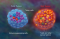 Bio-informatics Meetup: genomics and cancer