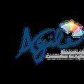 """Сертификационный курс """"Agile Project Management"""""""