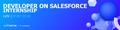 Internship: Developer on Salesforce