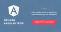 Dev-Pro Angular Flow