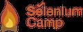 Конференция Selenium Camp