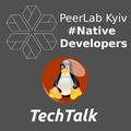 PeerLab Kyiv #NativeDev: Linux Network Driver Development