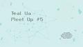 Teal UA MeetUp #5 Бирюзовый опыт