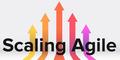 AgileTalks: Agile для больших команд: масштабирование на примере Nexus