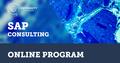 SAP Consulting Online Program | EPAM University