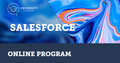 Salesforce Development | EPAM University