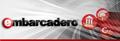 """Вебинар от компании Embarcadero """"Маленькие хитрости: Delphi и RTL"""""""