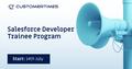 Salesforce Developer Trainee Program
