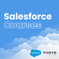 Forte Salesforce Course
