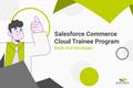 Salesforce Commerce Cloud Backend Trainee Program