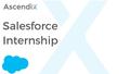 Salesforce Developer Internship