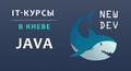 Курсы Java в школе New Dev