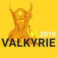 ITRally 2019 Valkyrie