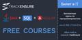 Бесплатный курс Junior Java Development at TrackEnsure