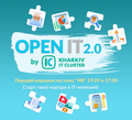 Воркшоп HR - Open IT 2.0