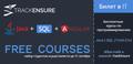 Курс Junior Java Development at TrackEnsure