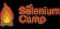 Конференция по автоматизации тестирования Selenium Camp