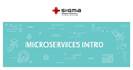 "Мастер-класс ""Introduction to Microservices for Java"""