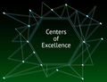 Centers ofExcellence. Особенности внедрения