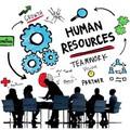 Карьера вIT: должности HR-менеджер &рекрутер