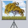 «Живий» прогноз погоди, абоЯк використати генеративне мистецтво увебі