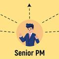 «Если что-то неполучилось, значит, это твой провал». Какие задачи решает SeniorPM
