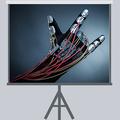DOU Проектор: Raccoon.world— гаджеты для взаимодействия сцифровой реальностью