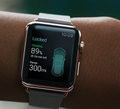 Якмирозробили додаток наApple Watch для управління машиною Tesla