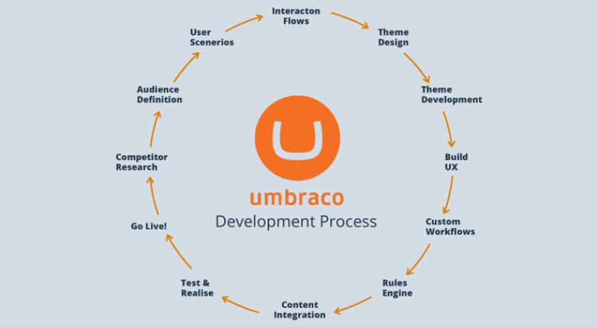 Обзор Umbraco content management system
