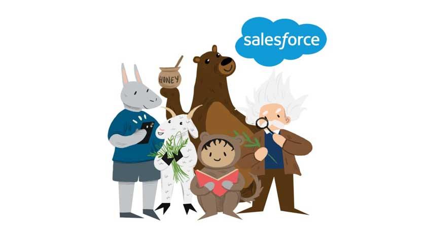 Огляд Salesforce CRM. Фронтенд, середовища розробки ікорисна література. Частина2