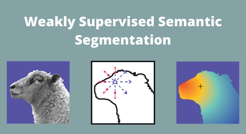 Weakly Supervised Semantic Segmentation: вчимоAI розпізнавати об'єкти накартинках