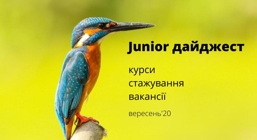 Junior дайджест: курси, стажування, вакансії. Вересень'20