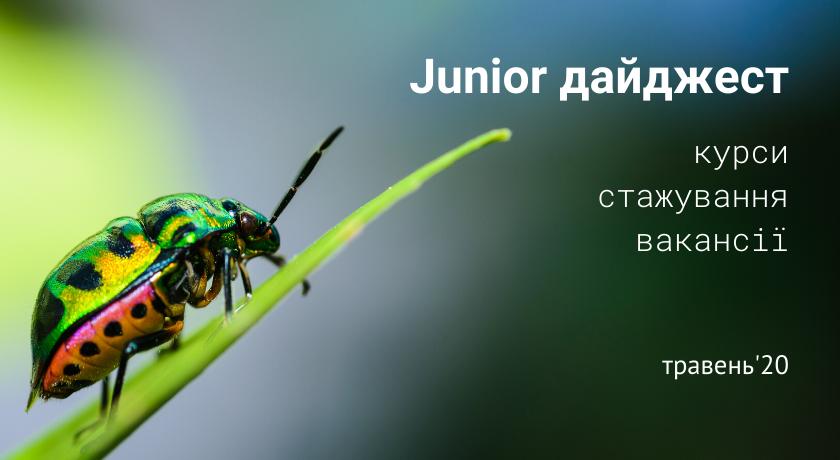 Junior дайджест: курси, стажування, вакансії. Травень'20