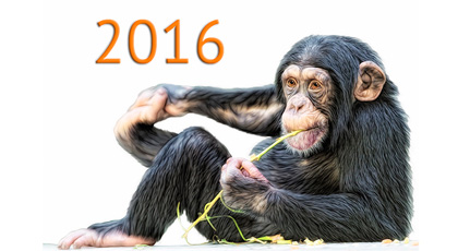 Опрос: итоги 2016 года поверсии DOU