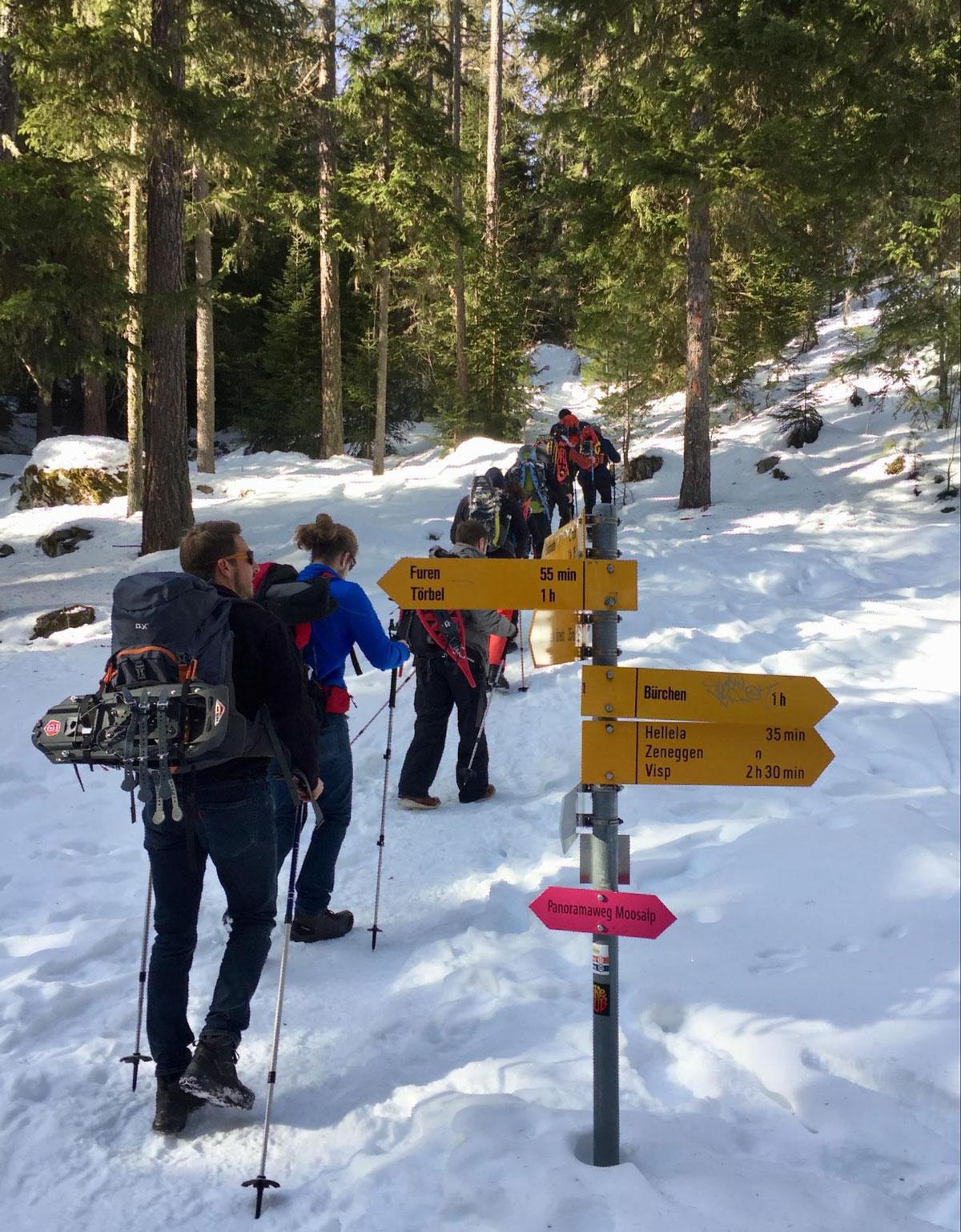 Тимбілдинг з колегами з телекомунікаційної фірми зі снігоступами у Валійских Альпах